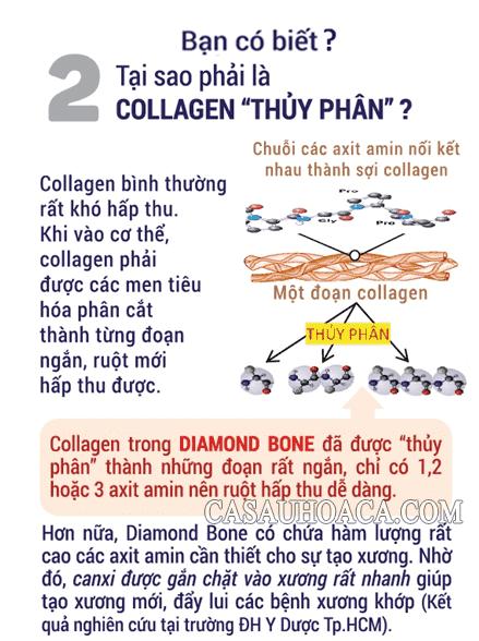 Bạn có biết Diamond Bone Collagen thuỷ ngân