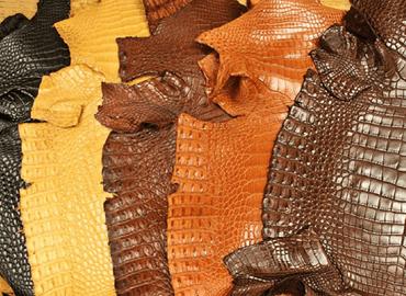 Da cá sấu loại 1 và loại 2 và cách phân loại chúng