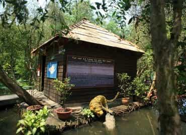 Vì sao được gọi là làng cá sấu Sài Gòn?